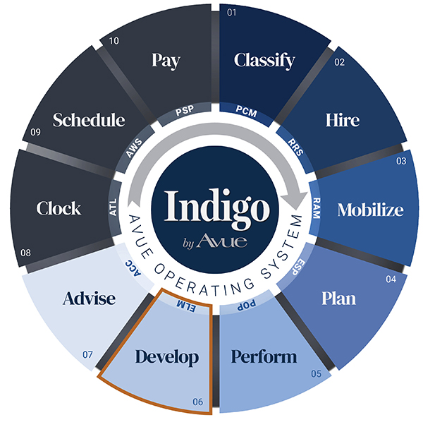 Indigo by Avue Develop Learning Management